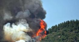 Marmaris 'de Orman Yangını